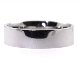 Platinum 5mm Flat Band